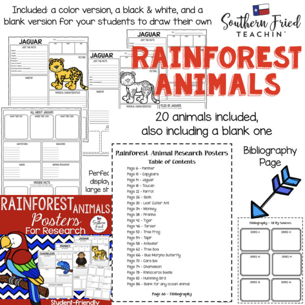 animals research projects