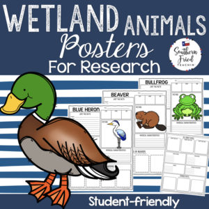wetland animals research projects
