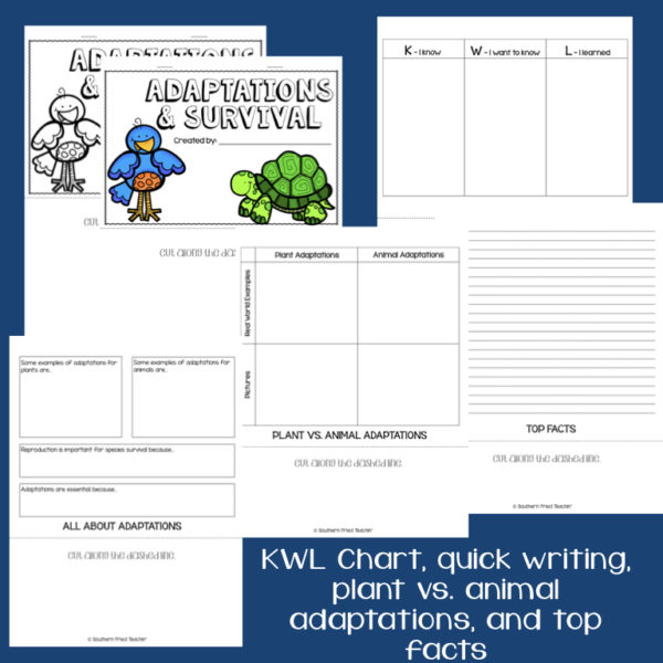 This engaging Adaptations & Survival Interactive Flip Book is an organized student resource that is load with critical thinking stems and questions which makes students really think. It can be used as a stand alone resource or for interactive notebooks. It can be used for so many things...note taking as a class, review, or even assessments. It is also great as a study tool for class and state assessments.